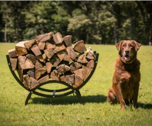 $51 (was $99.99) Curved Crescent Firewood Log Rack Wood Holder Lumber Storage