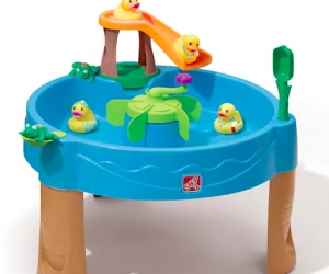 Get TWO for $34.98 | Step2 Duck & Frog Pond Water Table (was $75 EACH)