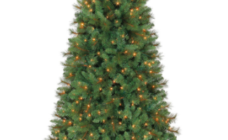 Upto 60% off Christmas Trees + FREE tree storage bag on tree purchases $99+