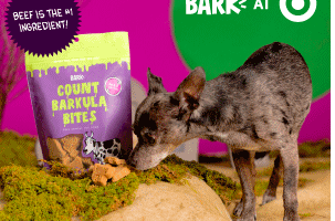 Target: Up to 75% off BARK Dog Treats