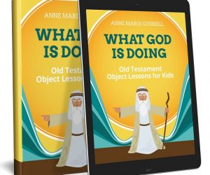 $12.59 (was $19.99) What God is Doing: Object Lessons (book)