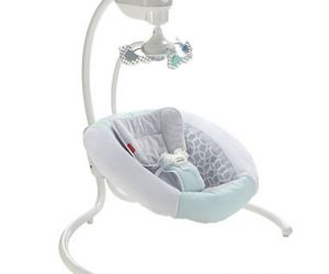 $79.98 (was $119) Fisher-Price Revolve Swing, Gray/Mint