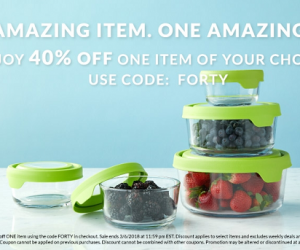 Oneida 40% OFF One Item With Coupon Code