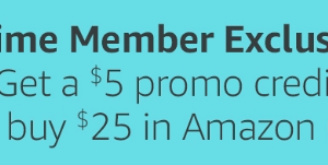 PRIME DAY DEAL: Get a $5 GC FREE when You Buy $25