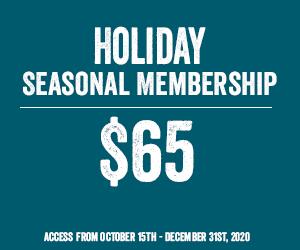 Holiday Seasonal $65