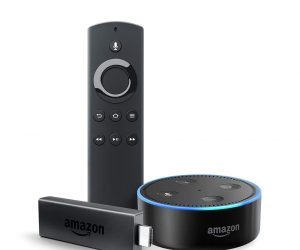 Fire TV Stick Bundle with Echo Dot (2nd Gen): $39.98 (was $79.98)