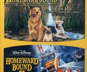 Homeward Bound Double Feature [DVD]: $4.99 (was $14.99)