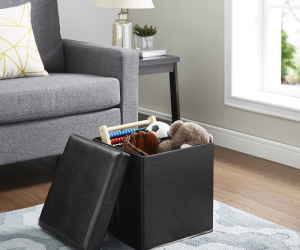 $12.99 (was $18.99) Mainstays Ultra Collapsible Storage Ottoman