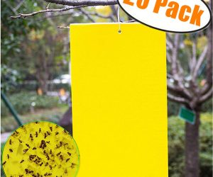Trapro 20-Pack Dual-Sided Yellow Sticky Traps for Flying Insects: $9.99 (was$14.99)