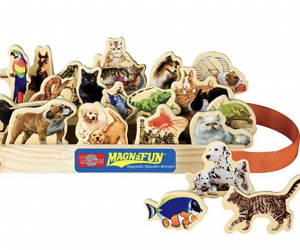 animal magnet set